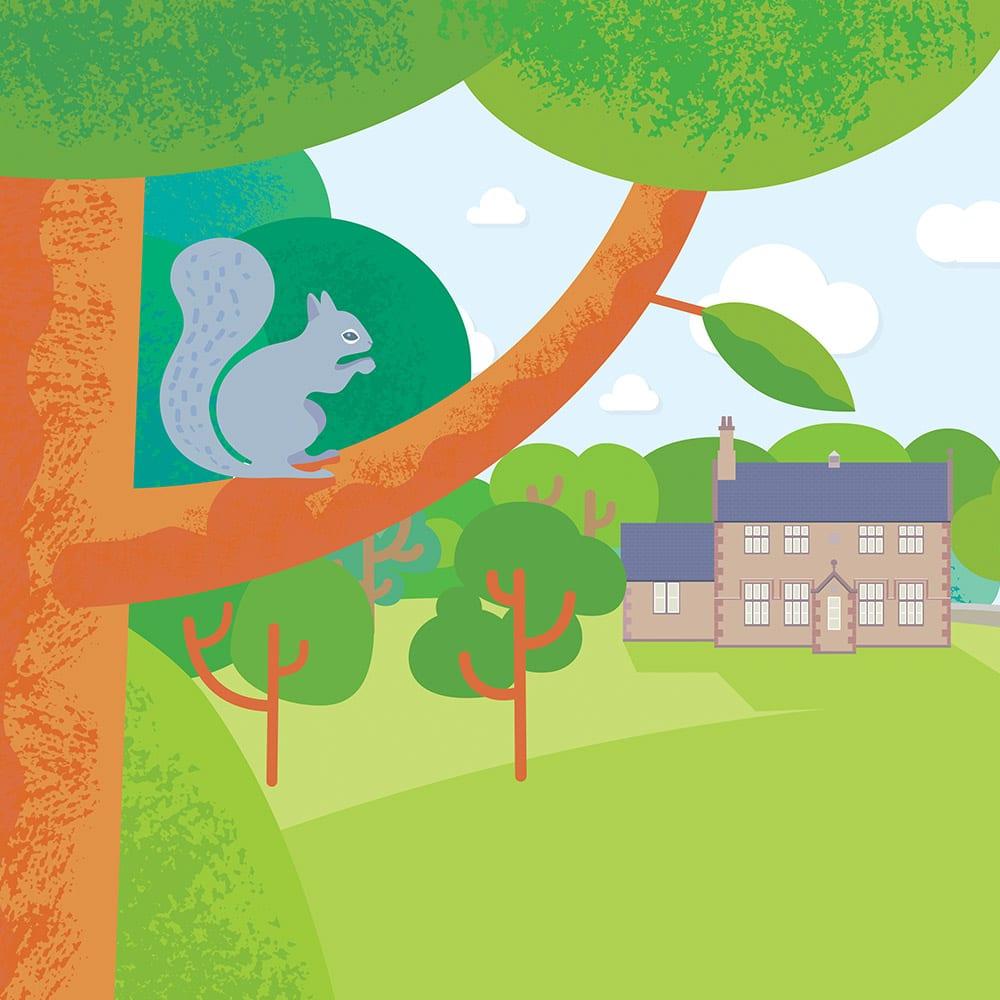 Rivington school website illustration